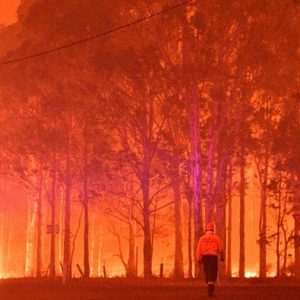 Australian Bushfires: Celebrities Are Finally Starting to Speak Up
